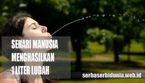Sehari Mulut Menghasilkan 1 Liter Ludah