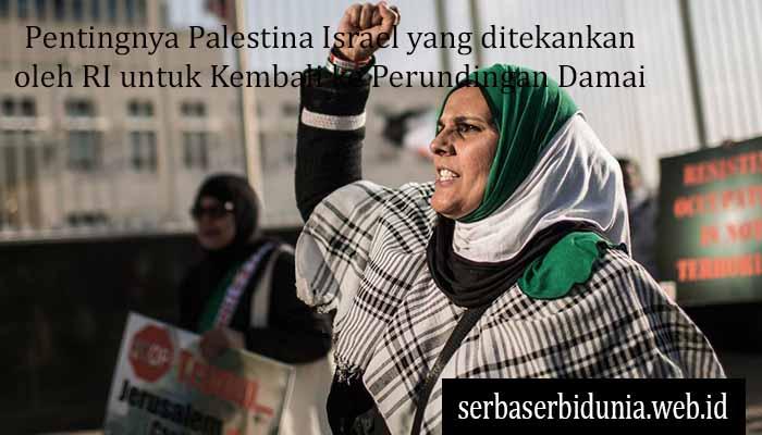 Pentingnya Palestina Israel yang ditekankan oleh RI untuk Kembali ke Perundingan Damai